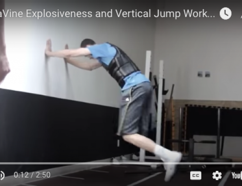 Zach Levine offseason workout (explosiveness)